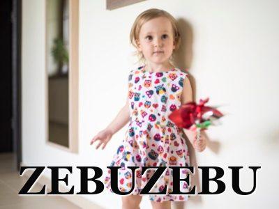 Zebuzebu-Icon-Capital